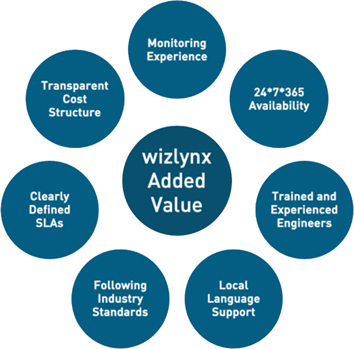 wizlynx Added Values